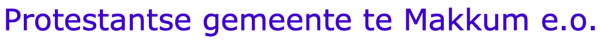PKN Makkum tekst logo